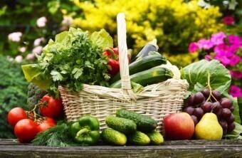 Organic Vegetable Gardening Quick Tips