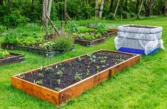Unique Garden Plans and Designs