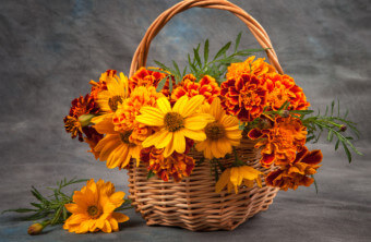 The Best Fall Bouquet