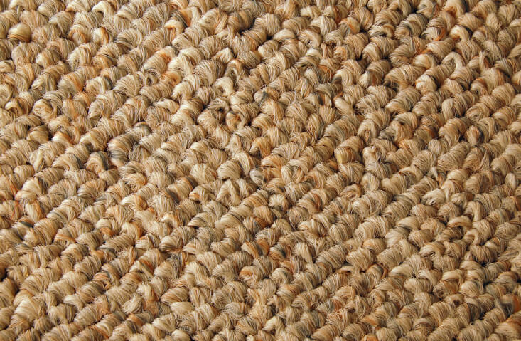 Berber Carpet Cleaning Superpages