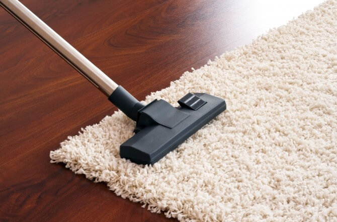 Carpet cleaner on area rug