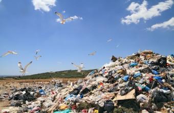 Landfills: A History of Waste Disposal