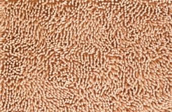 Health Benefits of Clean Carpet