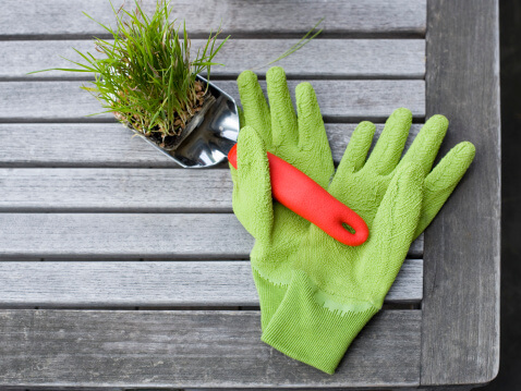 5 Common Gardening Mistakes - Gardening Gloves