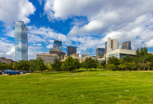Best Lawn Grass for the Dallas-Ft. Worth Area