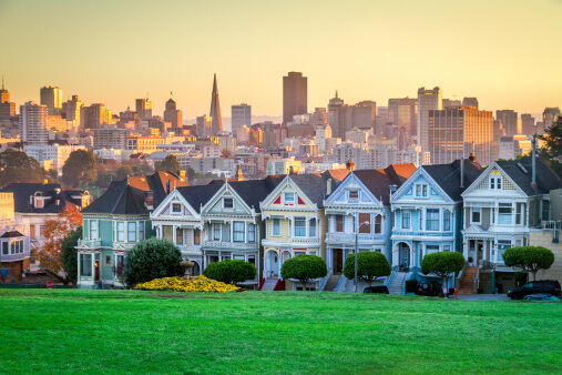 Best Lawn Grass For The San Francisco Oakland San Jose Ca