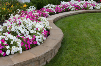 Landscaping Contracts: What to Expect