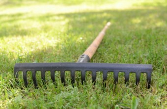 Lawn Care Tips for the Dallas-Ft. Worth Area