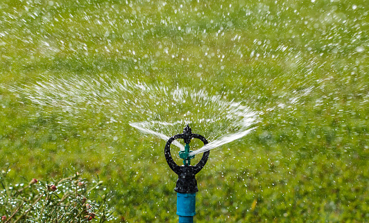 Lawn Care Tips for the Detroit Area