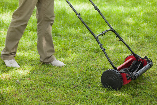 Lawn Care Tips for the Philadelphia Area