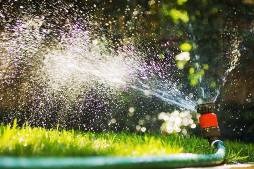 Tips for Saving on Your Summer Water Bill - Sprinkler