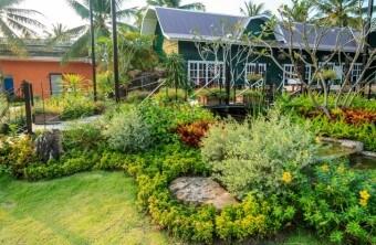 Top 5 Strategies for Gardening Success