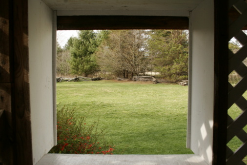 Best Lawn Grass for the Nashville Area