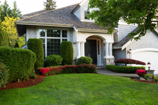 Best Lawn Grass For The Seattle Tacoma Area