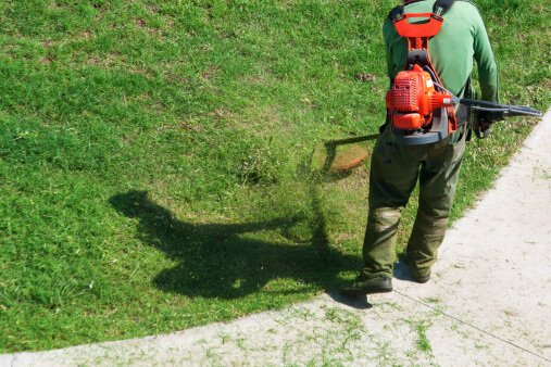 Lawn Care Tips for the Phoenix Area