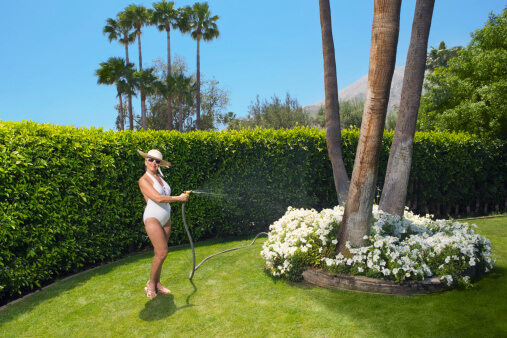 Lawn Care Tips for the San Diego Area