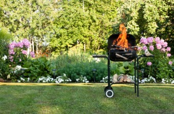 Lawn Care Tips for the St. Louis Area