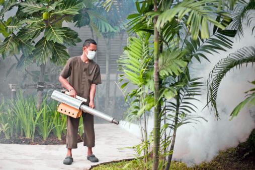 Pest Control and Building Management