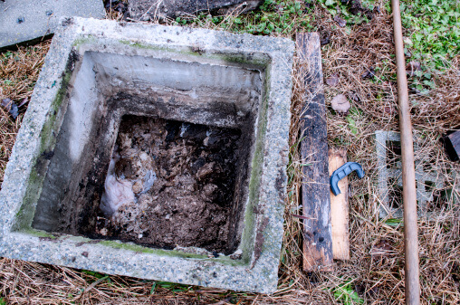 What Are the Worst Things That Can Happen to Your Septic Tank?