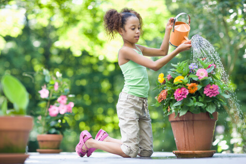 Container Gardens- 9 Tips for Conserving Water