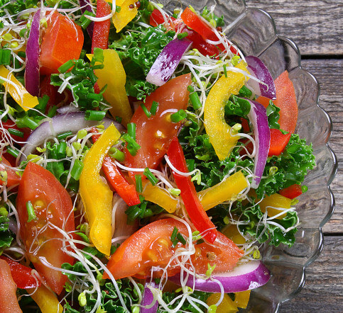 plant based diets? 8 terms to know