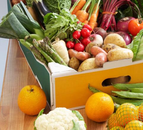 plant diets: flexitarian fruitarian, vegan, or vegetarian?