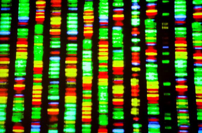 Genome Sequencing vs. Genotyping