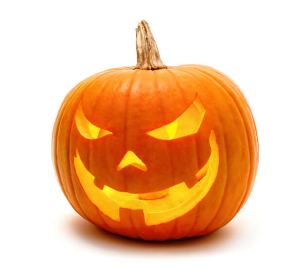 Preserving Halloween Pumpkins: 10 Tips & Tricks | Enlighten Me