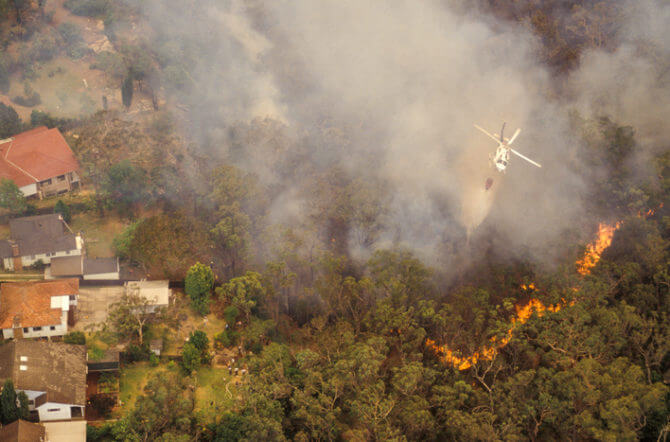 Brush Fire Basics - 12 Terms All Homeowners Should Know